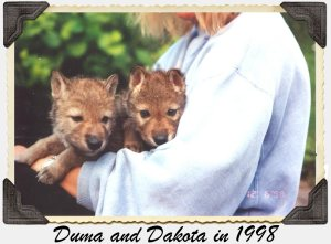 Duma and Dakota
